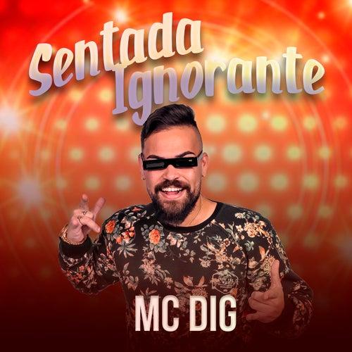 Sentada Ignorante de MC Dig