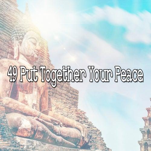 49 Put Together Your Peace de Nature Sounds Artists