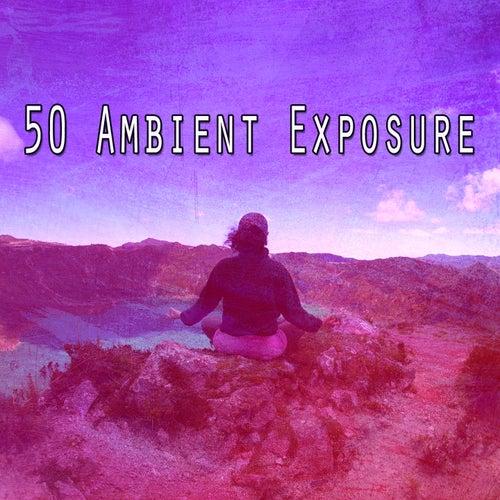 50 Ambient Exposure de Meditation Awareness