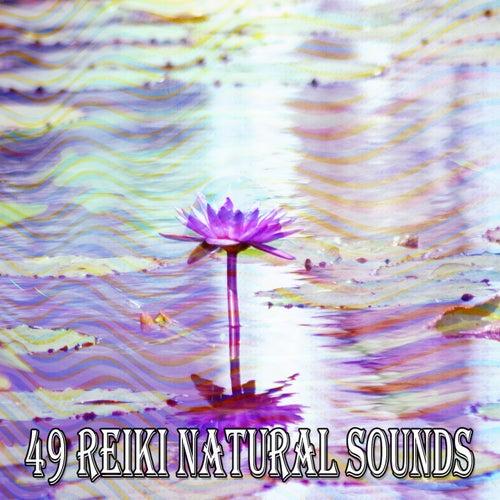 49 Reiki Natural Sounds von Guided Meditation