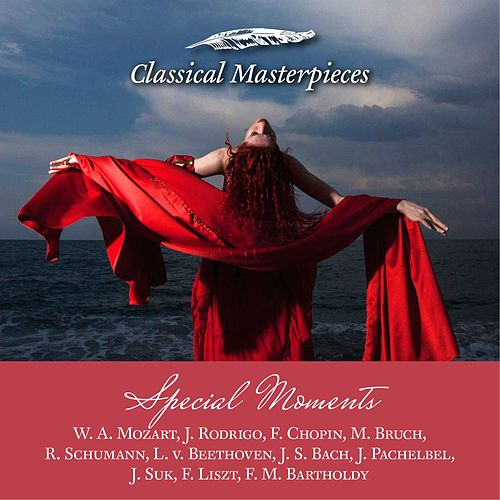 Music for Special Moments W. A. Mozart, J. Rodrigo, F. Chopin, M. Bruch, R. Schumann, L. v. Beethoven, J.S. Bach, J. Pachelbel, J. Suk, F. Liszt, F. M. Bartholdy (Classical Masterpieces) by Various Artists