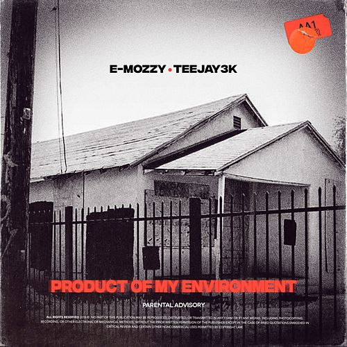 Product of My Environment von E Mozzy