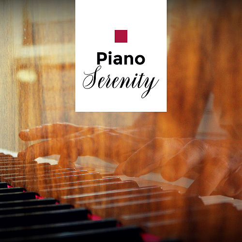 Piano Serenity: Instrumental Music for Deep Relaxation, Jazz Lounge, Peaceful Vibrations, Jazz After Work von Piano Dreamers