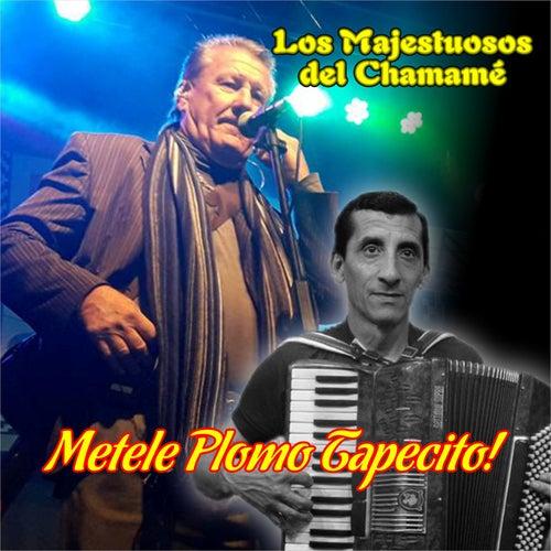 Metele Plomo Tapecito ! de Los Majestuosos Del Chamamé