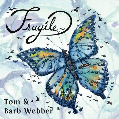 Fragile von Tom & Collins
