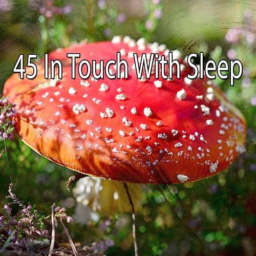 45 In Touch with Sleep von Rockabye Lullaby