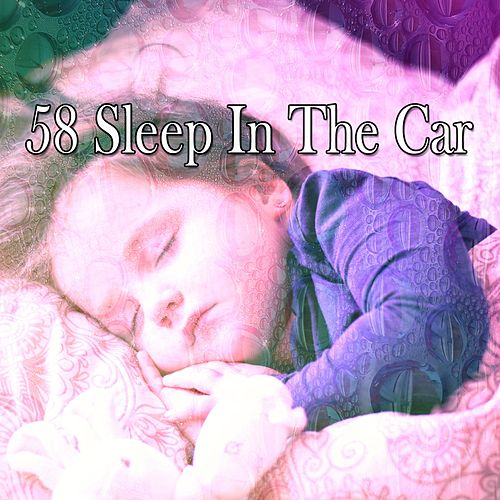 58 Sleep in the Car by Sounds Of Nature