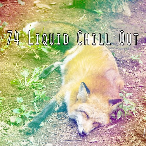 74 Liquid Chill Out by S.P.A