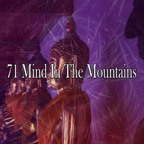 71 Mind in the Mountains by Massage Tribe