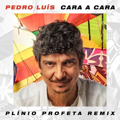 Cara a Cara (Plínio Profeta Remix) by Pedro Luis e A Parede