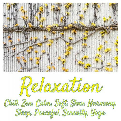 Relaxation: Chill, Zen, Calm, Soft, Slow, Harmony, Sleep, Peaceful, Serenity, Yoga de Various Artists