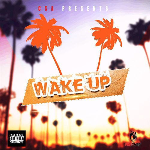 Wake Up by Big Dee