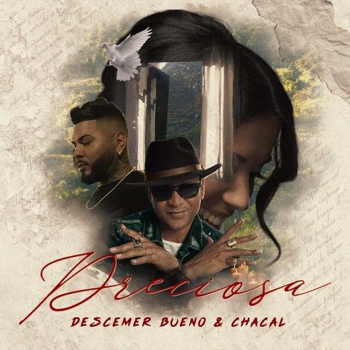 Preciosa by Descemer Bueno