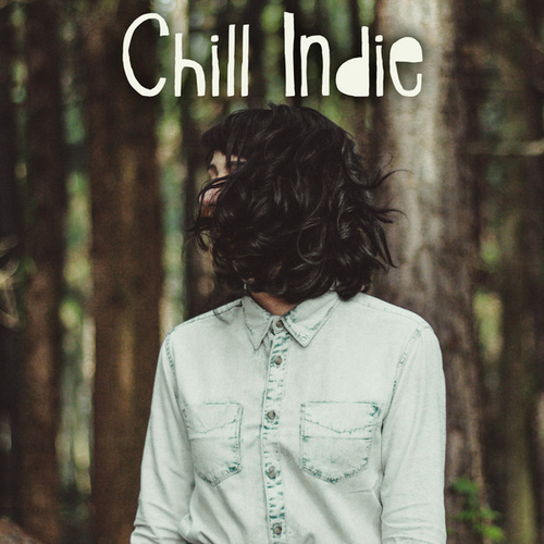 Chill Indie by Various Artists