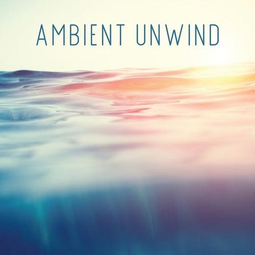 Ambient Unwind de Various Artists