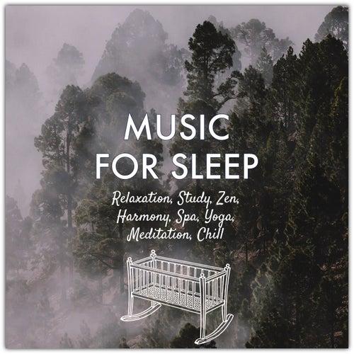 Music for Sleep: Relaxation, Study, Zen, Harmony, Spa, Yoga, Meditation, Chill de Various Artists