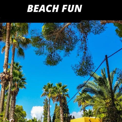 Beach Fun by Various Artists