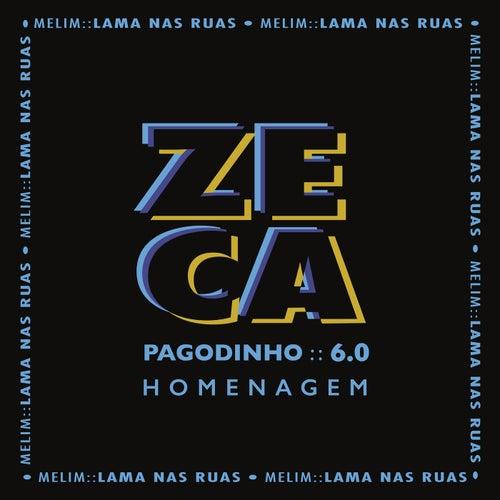 Lama Nas Ruas von Zeca Pagodinho