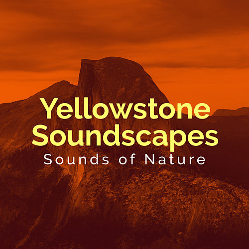 Yellowstone Soundscapes de Various Artists