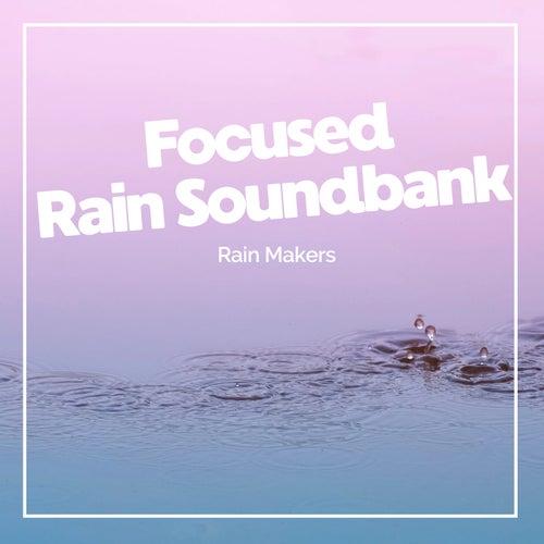 Focused Rain Soundbank de Rainmakers