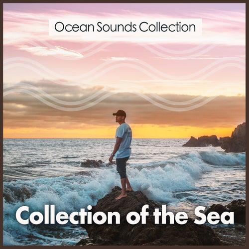 Collection of the Sea de Ocean Sounds Collection (1)