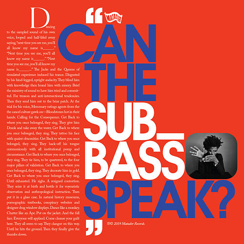 Can The Sub_Bass Speak? by Algiers