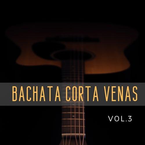 Bachata Corta Venas, Vol. 3 de Various Artists