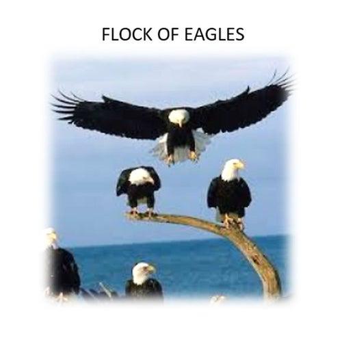 Pour Out Healing Rain de Flock of Eagles