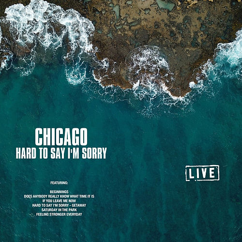 Hard to Say I'm Sorry (Live) de Chicago