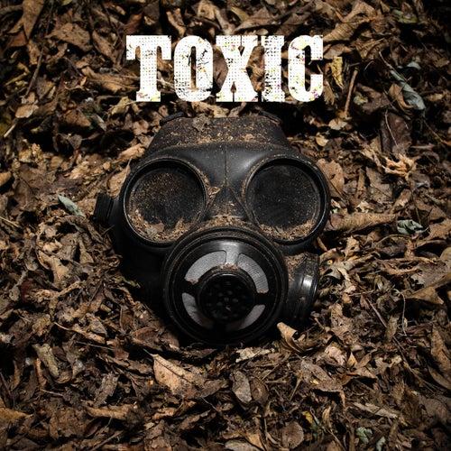Toxic (Acoustic) [feat. Cassa Jackson] von Rex Pearson
