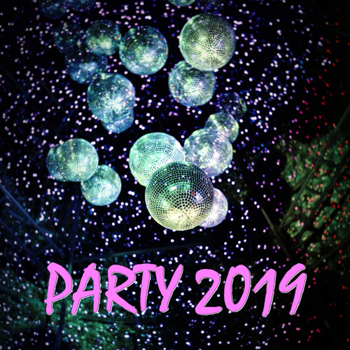 Party 2019 by Various Artists