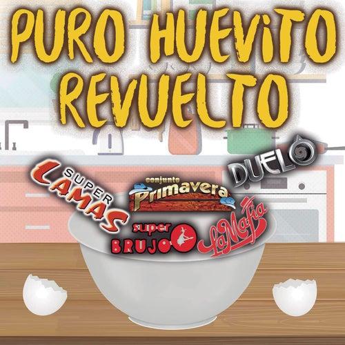 Puro Huevito Revuelto de Various Artists