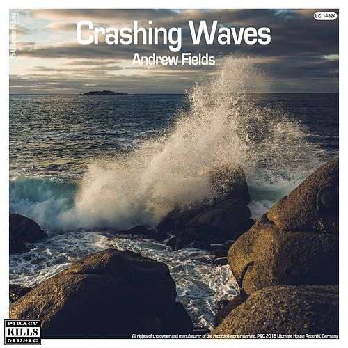 Crashing Waves von Andrew Fields