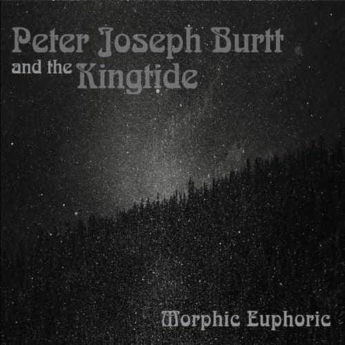 Morphic Euphoric van Peter Joseph Burtt