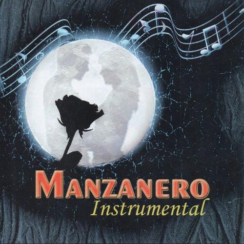 Manzanero Instrumental de P.O.P ORCHeSTRA