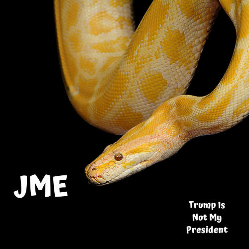 Trump Is Not My President von JME