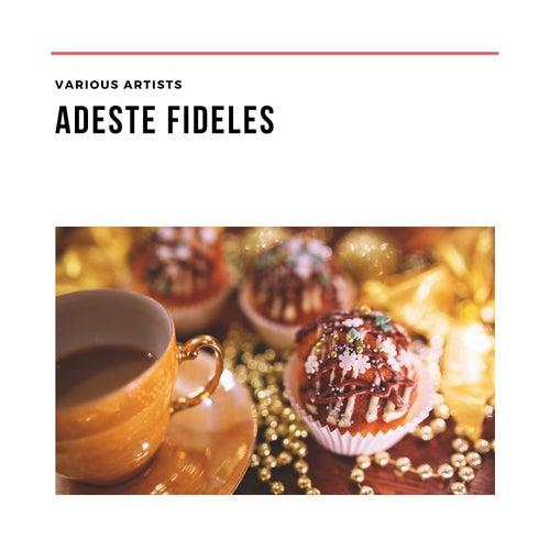 Adeste fideles von Various Artists