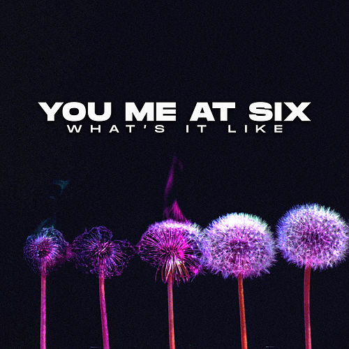 What's It Like by You Me At Six