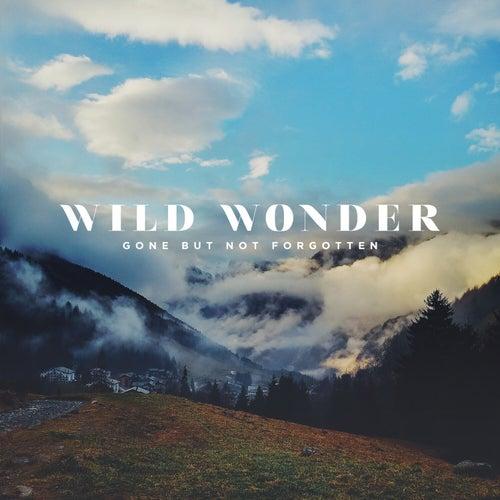 Gone but Not Forgotten by Wild Wonder