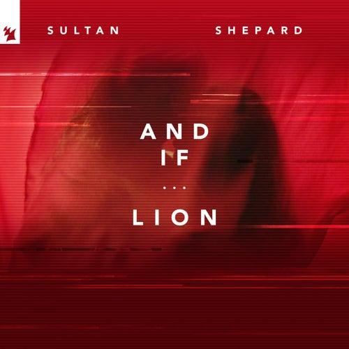 And If... / Lion von Sultan + Shepard