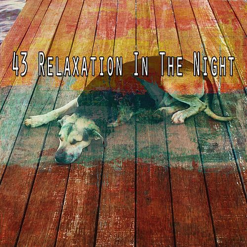 43 Relaxation in the Night von Best Relaxing SPA Music