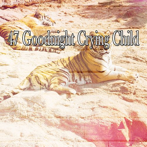 47 Goodnight Crying Child von Best Relaxing SPA Music