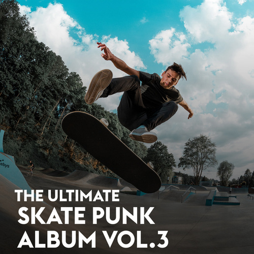 The Ultimate Skate Punk Album Vol.3 by Various Artists