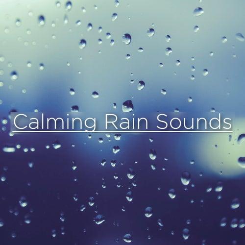 Calming Rain Sounds von Rain Sounds