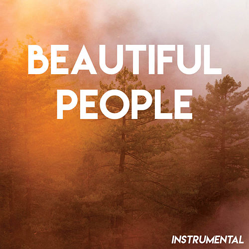 Beautiful People (Instrumental) von Vibe2Vibe