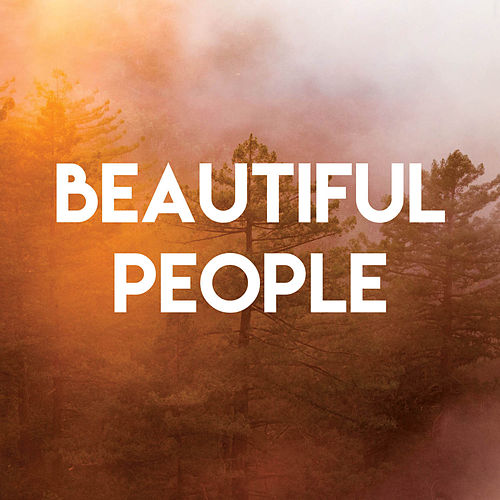 Beautiful People von Vibe2Vibe