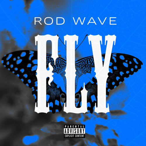 Fly von Rod Wave