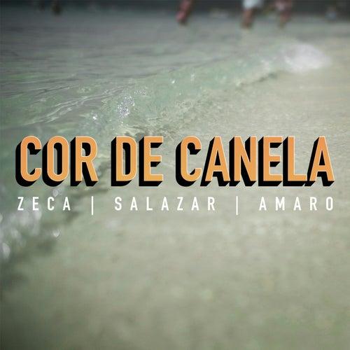 Cor de Canela de Zeca