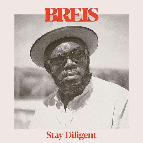 Stay Diligent by Breis