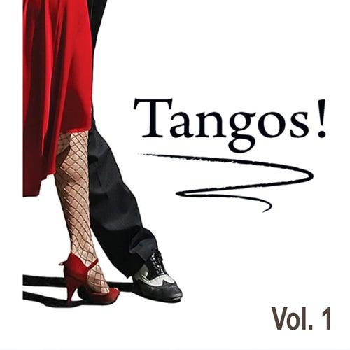 Tangos, Vol. 1 by Carlitos Nava Y Su Conjunto Argentino